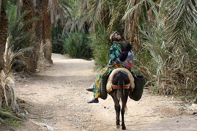 Maroc, Tiout