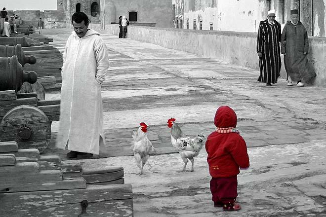 Maroc, Essaouira, sqala de la Kasbah