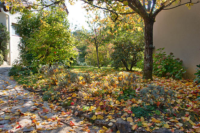 Jardin, Automne