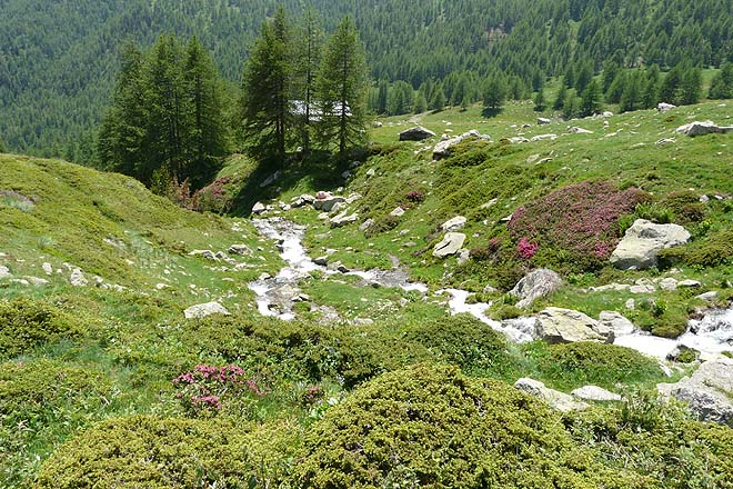 cols_Tende-Ouest